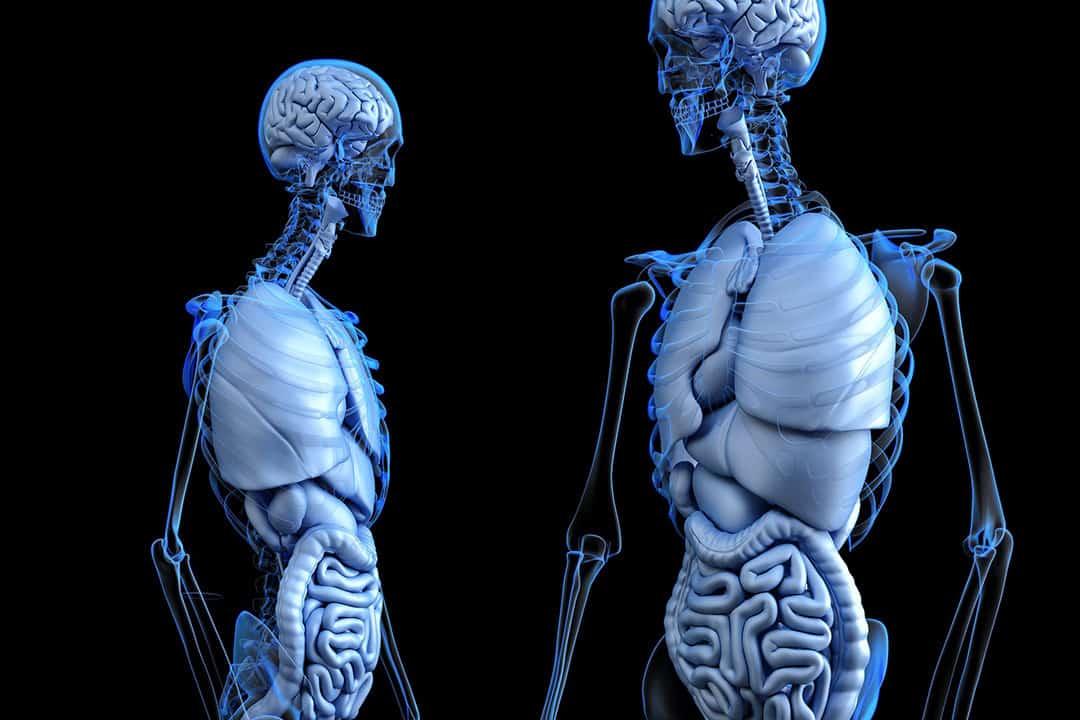 Understanding Comorbidity